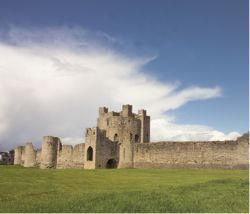 Trim Castle 2