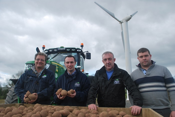 Conor, Philip Jr., Robert and Sean of our Potato Team