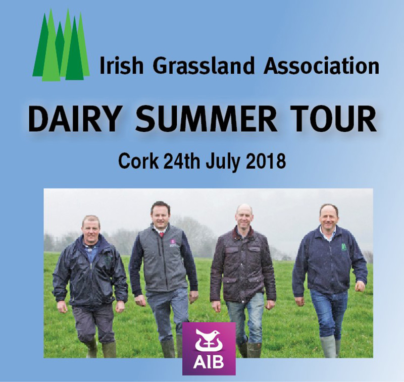 Dairy Summer Tour