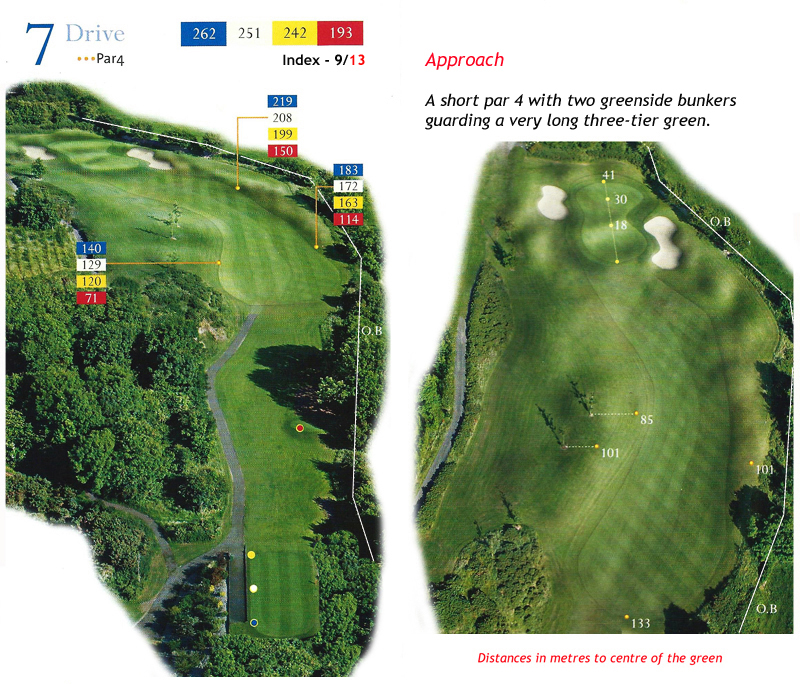 Ballyneety Golf Course Hole 7