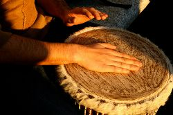 Shaman Drum
