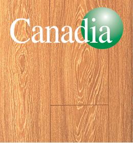 John Lynch Carpets - Timber Flooring Canadia