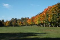 Autumn Course Photos