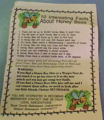 Info Leaflet