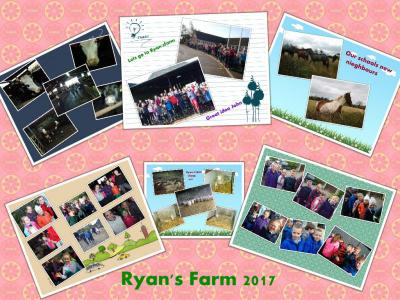 Partnerships/Ryan's farm & nature walk