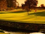 Green fee voucher for two at Killeen Castle with the use of a golf buggy