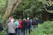 Louis Collins leading the group from Kells Tourism