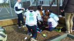 Spring planting - Sweet peas